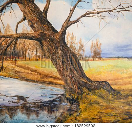 Spring landscape with old willow.The old tree leaned over the water. The art of oil painting.