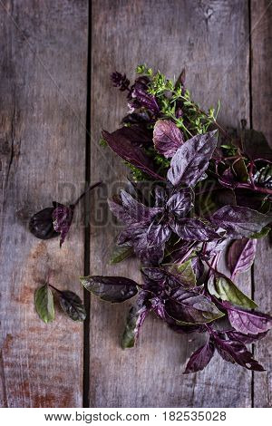 Purple Basil On An Old Wooden Background