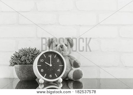 Closeup alarm clock for decorate in 10 o'clock with bear doll and plant on black glass table and white brick wall textured background in black and white tone with copy space