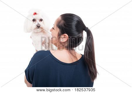 Back View Of Female With Her Beautiful Bichon