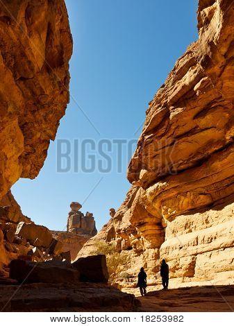 Tashwinet Gorge, Akakus (acacus) Mountains, Sahara, Libya