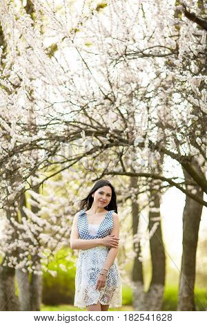Young woman in blooming apricot garden. She walks among flowering apricot trees.