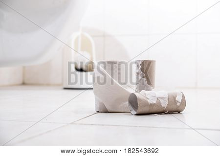 Empty Toilet Paper Rolls on the floor with toilet in background