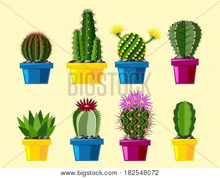 Cactus flat style nature desert flower green cartoon drawing graphic mexican succulent and tropical plant garden art cacti floral vector illustration. Style prickly botanical houseplant in pot.