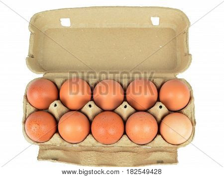 Open cardboard box with ten chicken eggs on white background