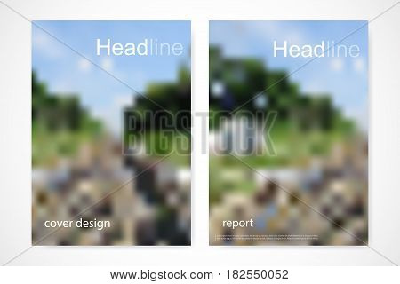 Business brochure flyer design a4 template. Vector flyer layout. Modern vector front page
