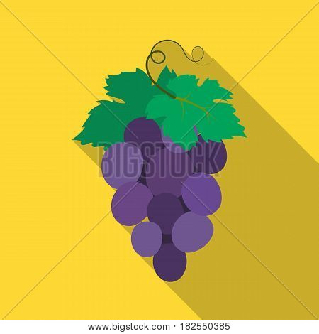 Bunch of wine grapes icon in flate design isolated on white background. Spain country symbol stock vector illustration.