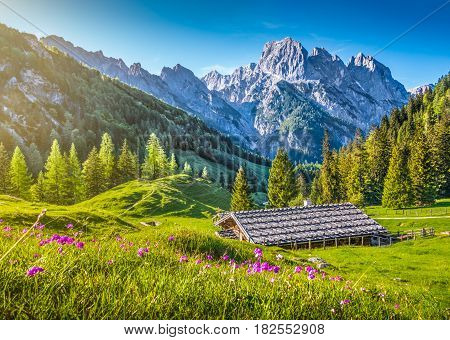 Idyllic Spring Landscape In The Alps With Traditional Mountain Lodge At Sunset