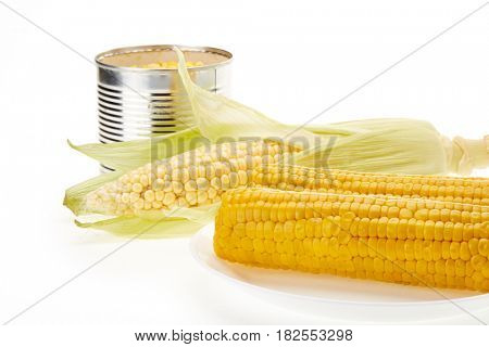 Fresh ripe ear of corn, plate with boiled corn on the cobs and canned corn in tin can on a white background.