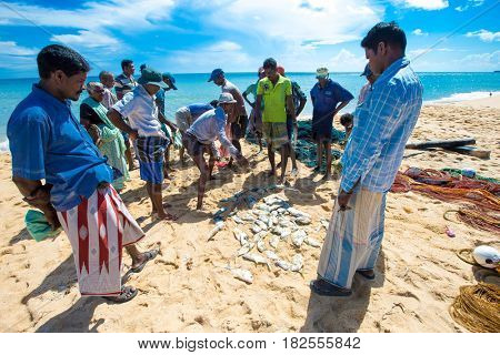 SRI LANKA - Mach 23: Local fishermen pull a fishing net from Indian Ocean on Mach 23, 2017 in Kosgoda, Sri Lanka. Fishing in Sri Lanka is the way they earn their living.