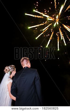Back Of Wedding Couple Looking On Night Sky With Fireworks.