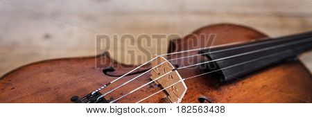 banner with one violina on a rustic wooden background