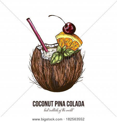 Coconut Pina Colada, vector illustration, colored sketch hand drawn