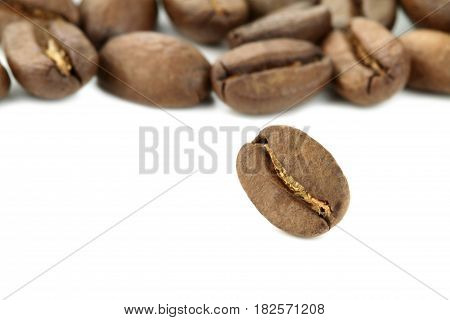 Coffee beans on white background Macro shot