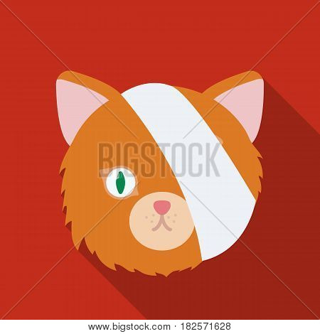 Sick cat with bandage on a head icon in flate design isolated on white background. Veterinary clinic symbol stock vector illustration.