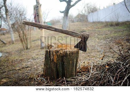 Old axe in stump. Old thrown garden. Dry grass. Autumn sad landscape. poster