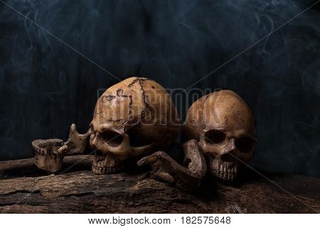 Still life painting photography with two human skulls with smoke Creepy and darkness style