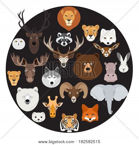 Big animal face icon circle set on black background. Cartoon heads of fox, rhino, bear, raccoon, hare, lion, owl, rabbit, wolf, hippo, elephant, tiger, giraffe, moose, deer, elk, sheep, ram, ermine