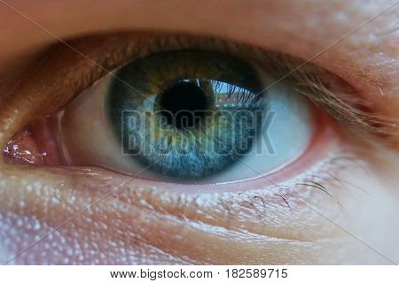 Close up of a mans blue eyes, extrem macro.