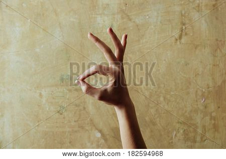 Female Hand Showing Ok Gesture