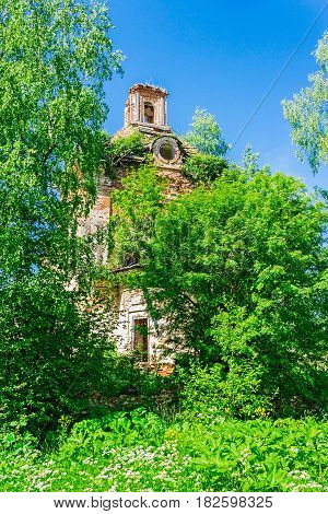 Ruined brick church overgrown with bushes and trees