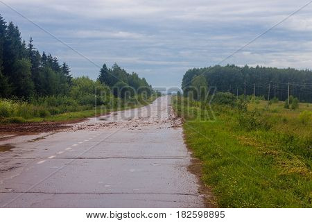 Dirty wet road in the forest on a rainy day