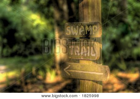Swamp Trail