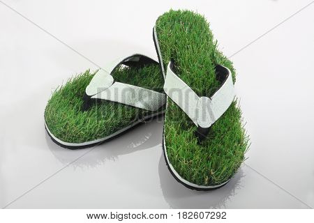 Green Grass Slipper / Flip Flops on White Background