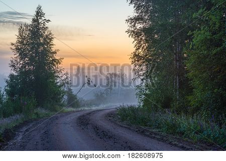 Misty countryside road in summer night light
