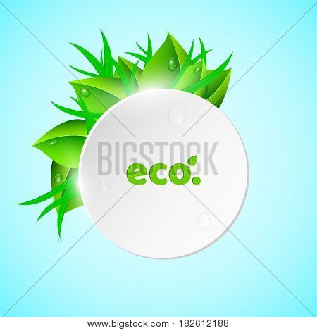 White light round banner in the summer style. Fresh leaves and grass. Drops of dew flow down the leaves. Ecological banner. Realistic vector illustration. EPS 10