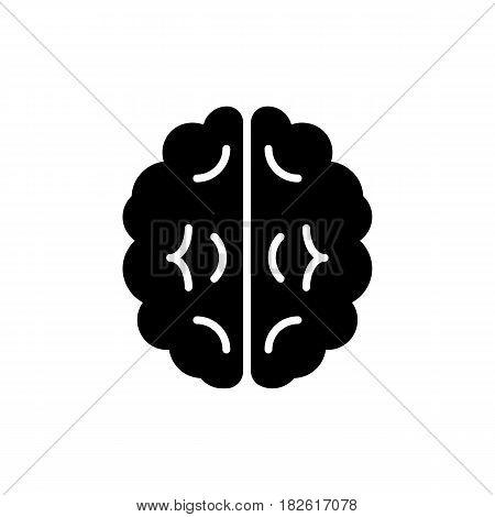 Vector outline illustration of human brain on white background. Eps 10