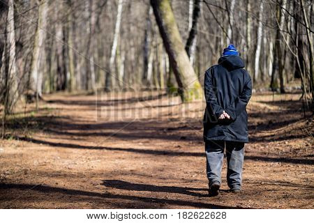 Man walks in the Woods on a sunny day