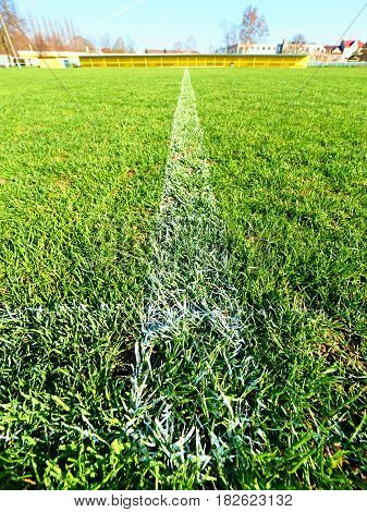 Border Of Painted White Lines On Natural Dry Football Grass. Cut Green Turf Texture.