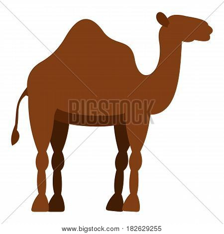 Dromedary camel icon flat isolated on white background vector illustration