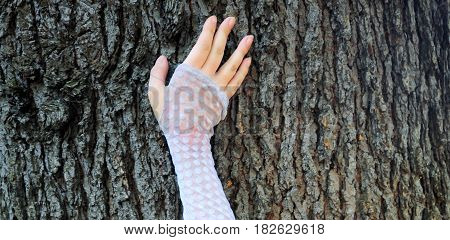 Abstract hand on a tree in nature outdoors.