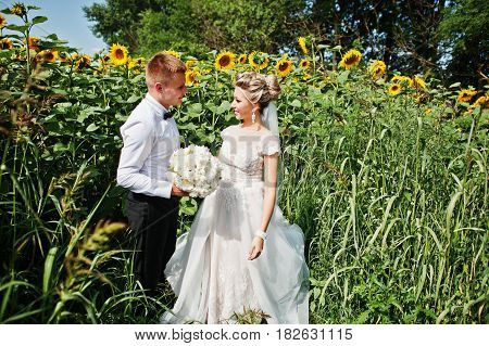 Wedding Couple At Sunflowers Field In Love.