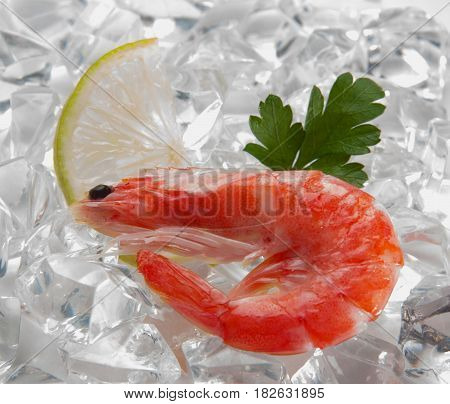 Tiger shrimps with lime, lemon, parsley on ice. Fresh tasty prawns ready to be cooked.
