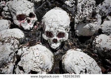 still life of many fake human skulls