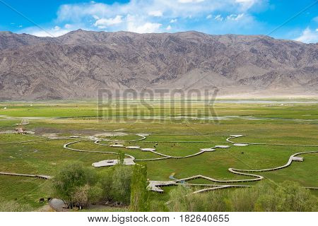 Xinjiang, China - May 21 2015: Golden Grass Land View From Stone City Site Of Tashkurgan. A Famous L