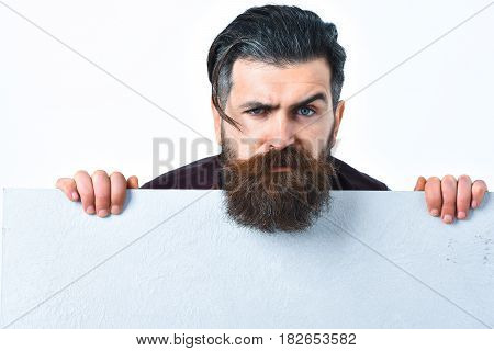 Bearded man long beard. Brutal caucasian serious unshaven hipster with white paper sheet in studio background