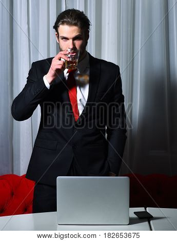 bearded man businessman long beard brutal caucasian hipster with moustache with glass of whiskey has serious face unshaven guy with stylish hair in suit and red tie works at laptop computer