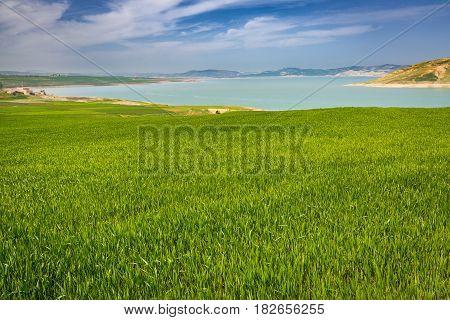Spring Landscape Around Barrage Idriss, Morocco