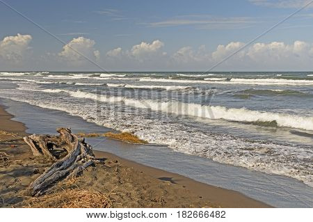 Ocean Waves on a Remote Caribbean Coast of Costa Rica near Tortuguero