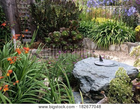 Garden courtyard with a sundial, wooden ladder, blue agapanthus, orange bird of paradise, and a hummingbird in flight
