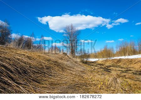 Spring Landscape In The Central Part Of Russia.