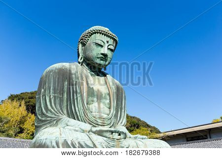 Giant Buddha in Japan