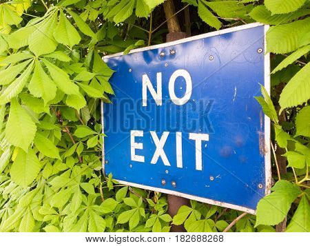 A Blue And White Sign Saying No Exit Outside Near A Car Park Restriction