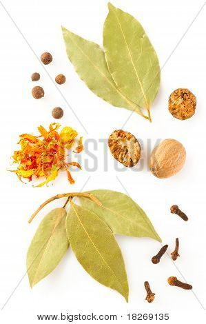 Spices. Mix Of Different Dry Herbs