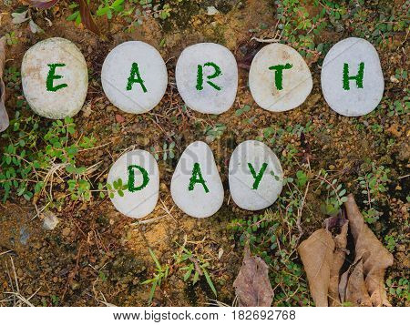 earth day concept. stone with green text on green gress background