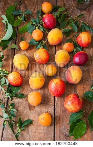 Mix Of Fresh Ripe Fruits. Peaches, Apricots, Nectarines With Leaves On A Wooden Background. Summer F